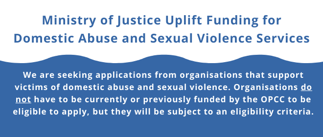 Important message for domestic abuse and sexual violence services providers
